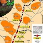 Карта грибника: грибные направления Подмосковья