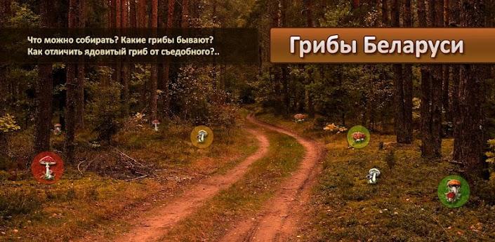 Программа: Грибы Беларуси под Android