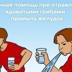 МЧС Украины рассказал, как не отравится грибами