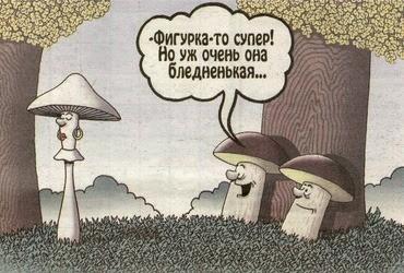 Саратовский Роспотребнадзор объяснил, почему травятся грибами