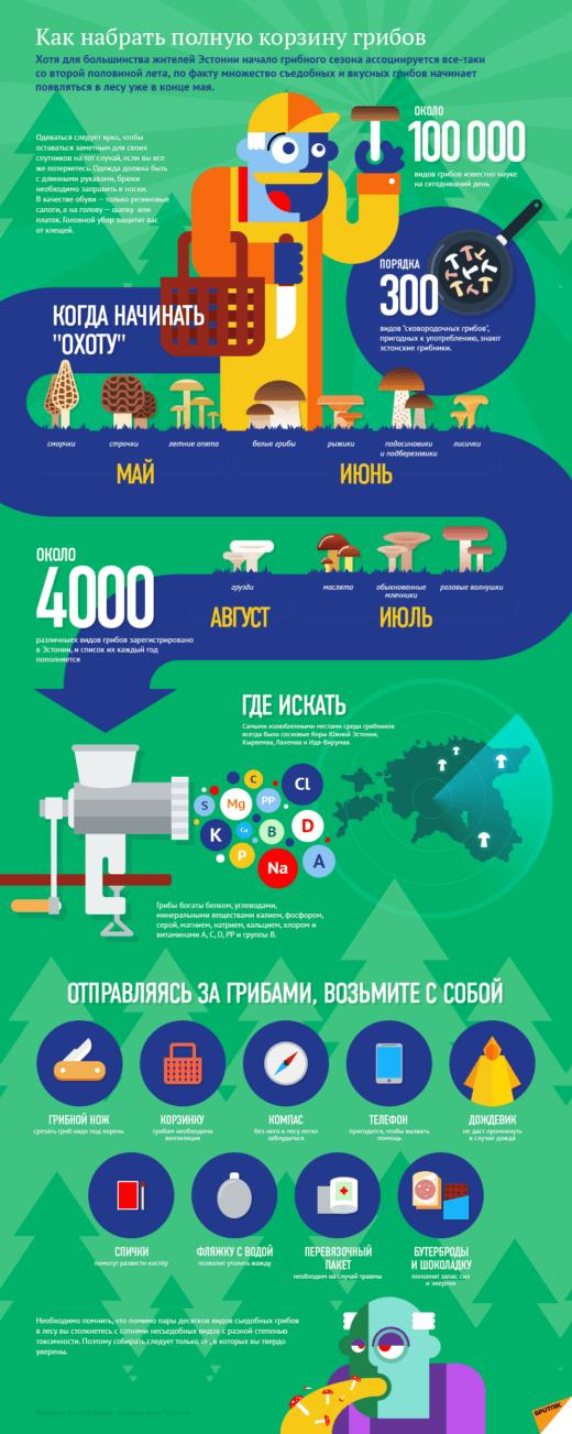 Хотя для большинства жителей Эстонии начало грибного сезона ассоциируется все-таки со второй половины лета, по факту множество съедобных и вкусных грибов начинает появляться в лесу уже в конце мая.