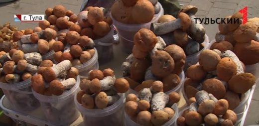 50-60 грибных отравлений каждый сезон. Для тульских токсикологов наступает горячая пора.