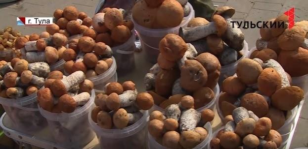 Как тулякам купить безопасные грибы