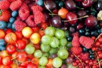 Брянцев предупредили о ядовитых ягодах