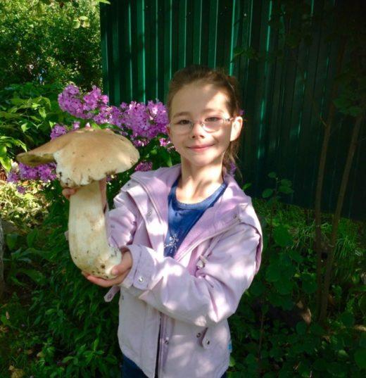 Девочка нашла огромный гриб в карельском лесу