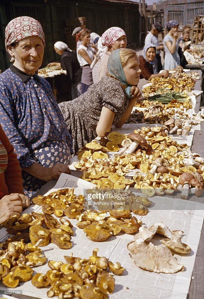 Продажа грибов на Даниловском рынке