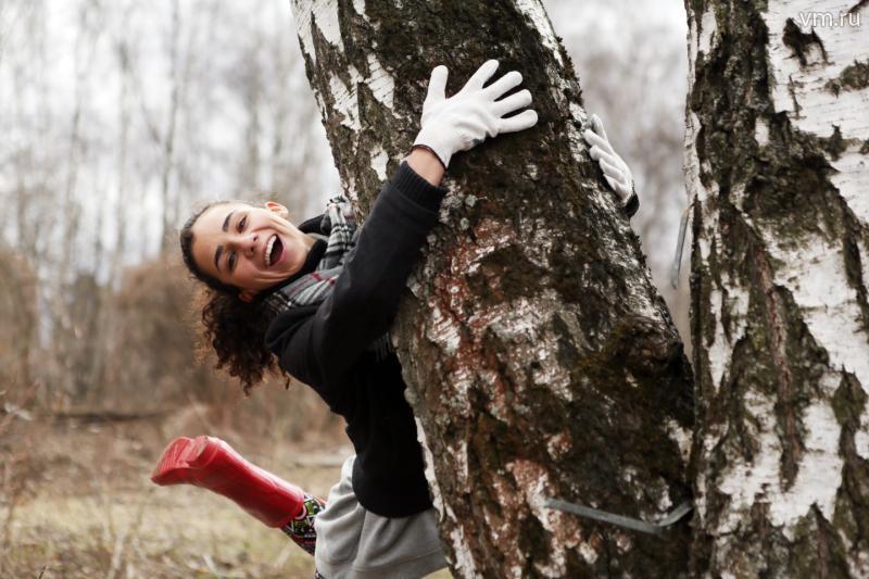 Леса Новой Москвы очистили от мусора и сухостоя