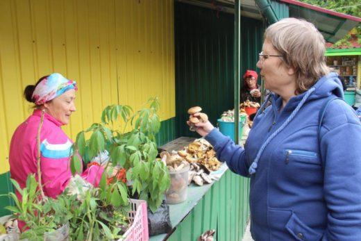 В результате чередования дождей и теплых дней в лесах Челябинской области появилось много грибов.