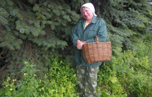 Советы начинающим любителям тихой охоты, дала опытный грибник Марии Акимова: что, где, как, когда собирать и на что следует обращать внимание.