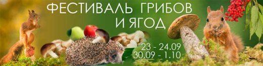 В Санкт-Петербурге в сентябре 2017 года в 15-й раз проходит общенародный праздник, общегородской грибной пикник - «Фестиваль Грибов и Ягод».