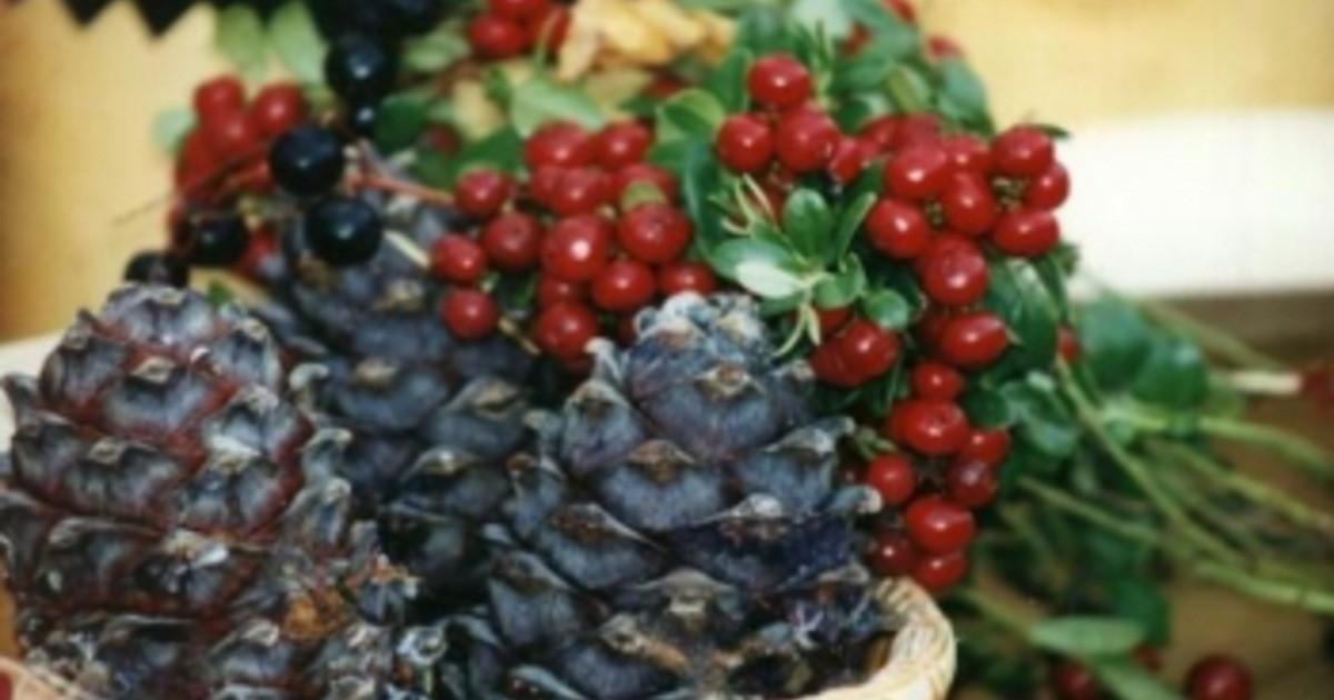 В этом году первенство в объемах заготовки среди дикоросов прочно удерживают орехи