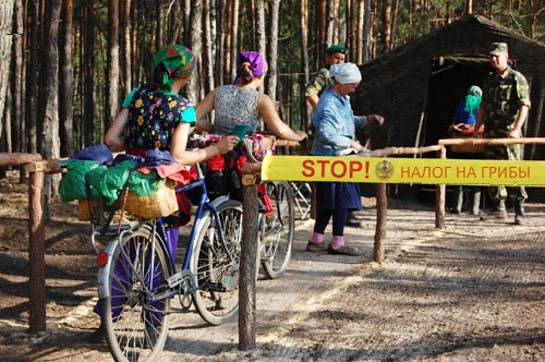 Власти Крыма успокоили: идею «налога на прогулки в лесу» не правильно поняли