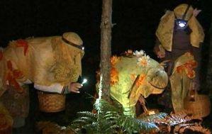 В Латвии прошел очередной чемпионат по ночному сбору грибов