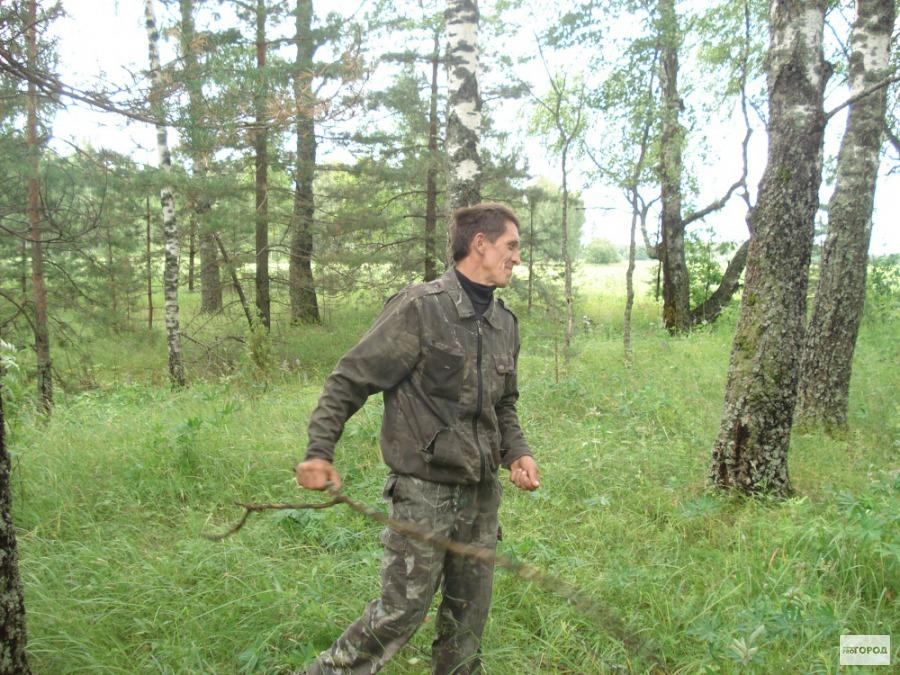 Советы: как не заблудиться в лесу