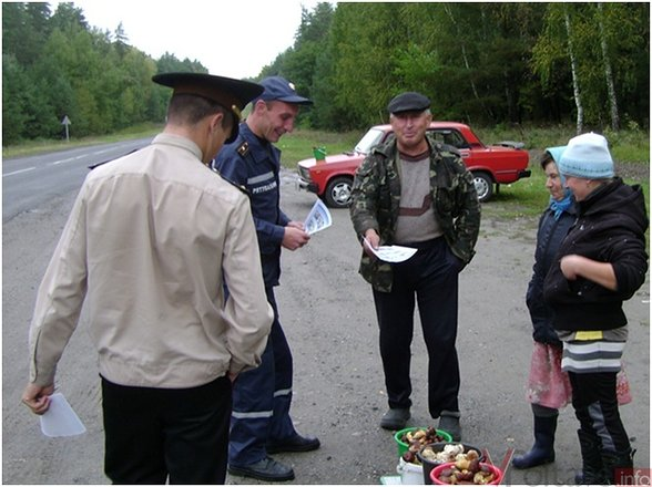 Украина: проверка показала, что продавцы грибов не уверены, что их товар можно есть