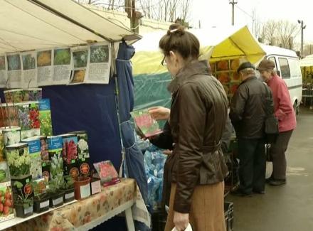 На рынках в свободном доступе грибницы белого и подберезовика