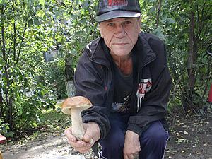 Во владимирских лесах пошли грибы