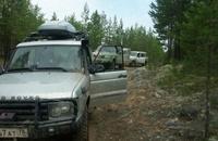 Машины любителей «тихой охоты» грабят в калужских лесах