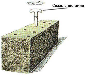 Инокуляция соломенного брикета