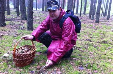 За грибами. Специалисты советуют «охотиться» в лесах вдали от промышленных предприятий. Фото: И. Шаповалов