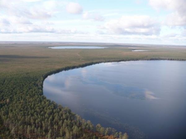 В Новгородской области воссозданы три заказника
