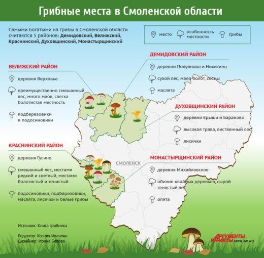 Согласно многолетним наблюдениям грибников, которыми они делятся на специализированных ресурсах, самыми грибными в Смоленской области считаются пять районов - Демидовский, Велижский, Краснинский, Духовщинский иМонастырщинский.