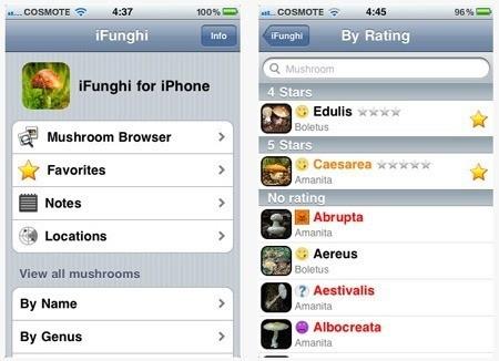 Программа iFunghi для владельцев iPhone и iPad