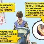 В Москве грибы продают по цене красной икры