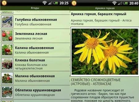 Программа Грибы, Ягоды, Травы под Android