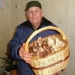 Незадолго до ледяного дождя грибники Челябинской области собирали грузди