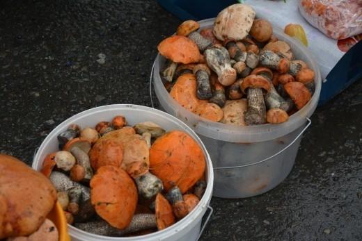 На Ямале сезон «жатвы», урожай грибов выдался на славу, да и ягодами нынче природа не обделила. Что делать с излишками и кто диктует цены?
