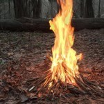 Администрация Якутска ввело особый противопожарный режим