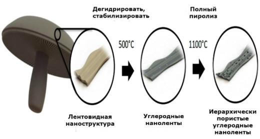 Диаграмма, показывающая, как грибы используются для изготовления анодных аккумуляторов (иллюстрация UC Riverside).