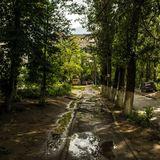 Летом всё хоть сколько-то мобильное население страны, даже те, кому не хватает на путёвку в дальние дали, выбирается на природу, ближе к речкам и лесу