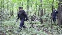 В лесу предлагают ввести паспортный контроль