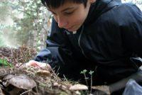 Грибной сезон-2017: Где зимой в Крыму прячутся мышата и опята?
