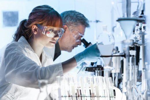 Исследование американских ученых показало, что высушенные на солнце грибы, например, вешенки, помогают в борьбе с туберкулезом.
