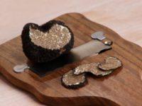 Цены на трюфели выросли вместе с грибами