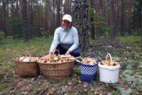 Как добыть грибы в Ижевске?