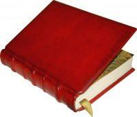 Красная книга Липецкой области пополнится редкими видами животных и растений