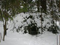Мастер-класс по выживанию в лесу пройдет в Нижегородской области