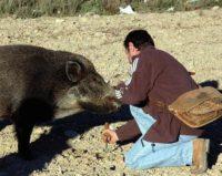 В Испании откроется центр изучения трюфелей