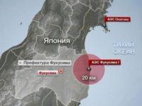 Нормы содержания цезия превышены в грибах за 350 км от Фукусимы