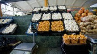 Почти 90 кг грибов не допустили к продаже на рынках Москвы в 2013 году