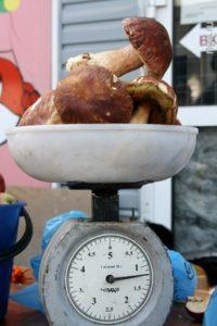 Жара и засуха подняли цены на грибы