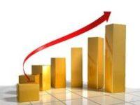 Грибной рынок России растет не менее чем на 25% в год