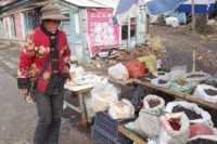 В Уссурийске китаянку оштрафовали за покупку краснокнижных грибов