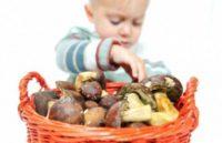 Грибы укрепляют иммунную систему благодаря витамину D