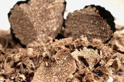 Гриб на вес золота: в поисках крымского трюфеля