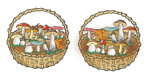 Посмотри внимательно и скажи, какого гриба не хватает в одной корзинке